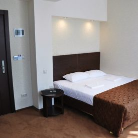 2-х местный 1-но комнатный стандарт без балкона - Гранд отель Гагра - отель европейского уровня в Абхазии (Grand Hotel Gagra)